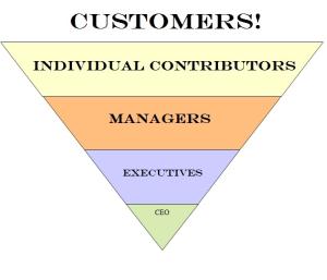 New Org Chart 1c